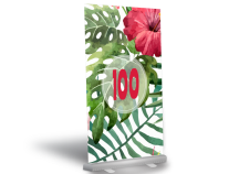 RollUp Banner 100