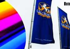 imprimare steaguri