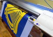 imprimanta steaguri